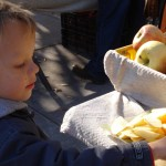 A pint-sized patron solemnly selects an apple slice.
