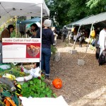Hattie Carthan Community Garden and Market
