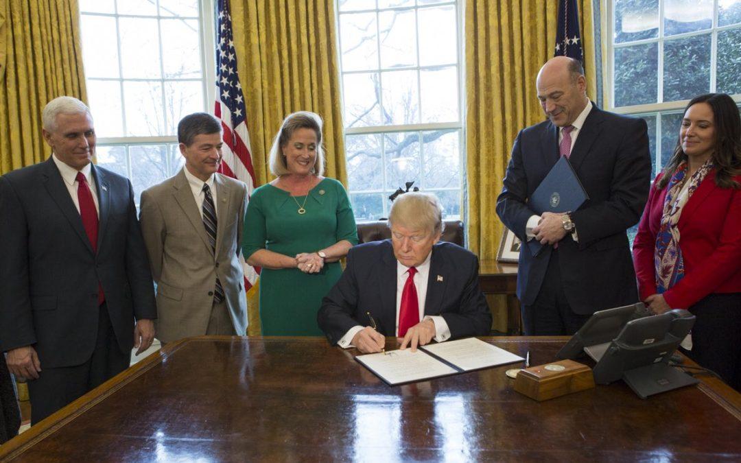 Examining Regulations Under Trump