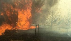 WILDFIRE: The two biggest fires ever strike two years in a row