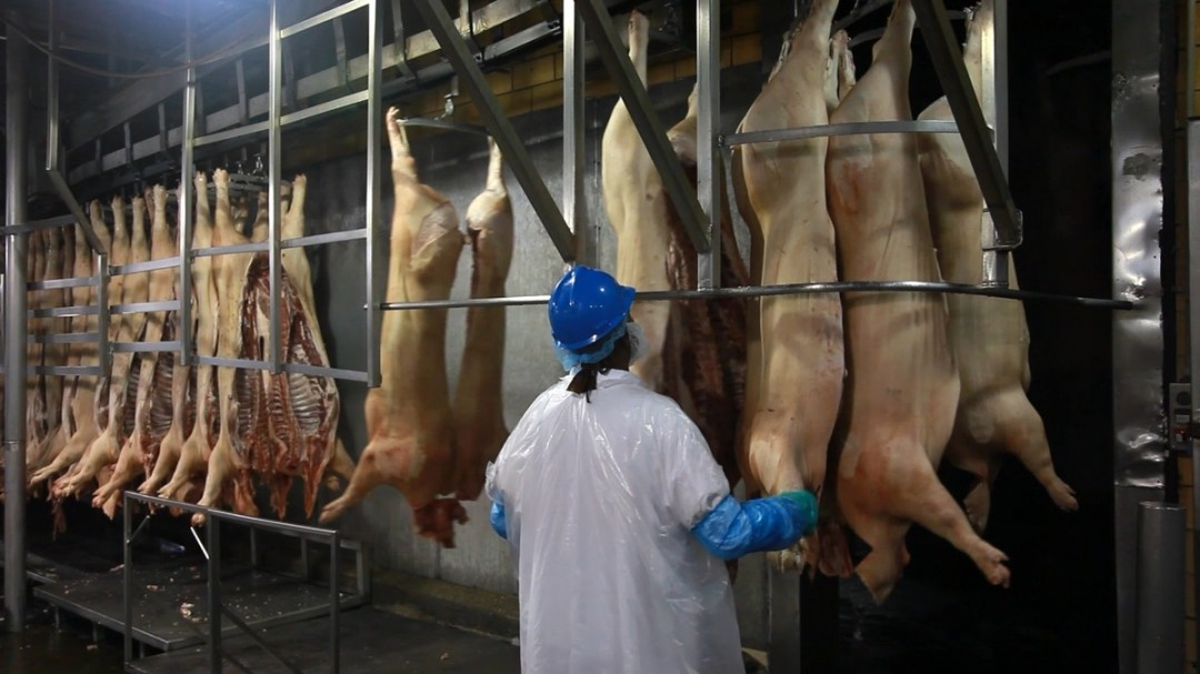 China's growing appetite for pork (PBS NewsHour, Part 1)