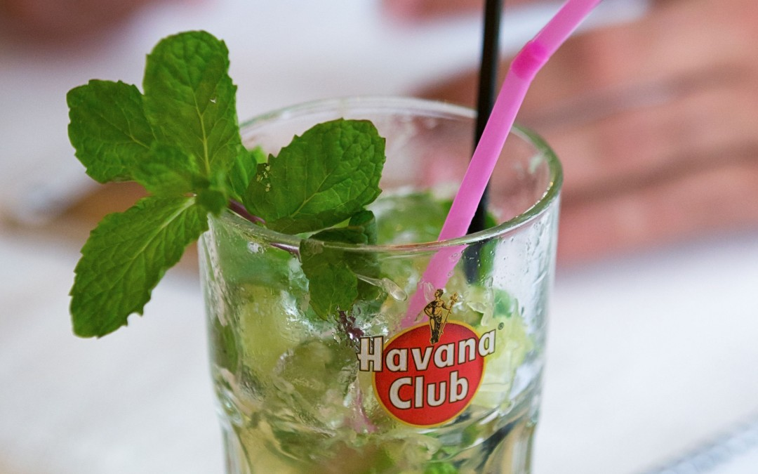 When demand for mint in Cuba's mojitos became too great, two brothers stepped up to supply