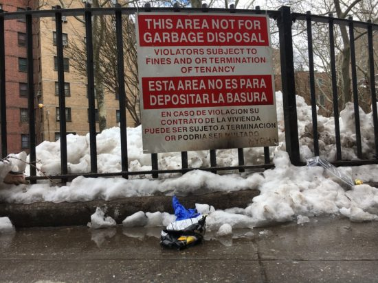NYCHA residents say fellow tenants should be accountable for rat infestations