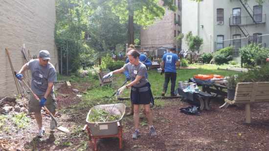 Revitalized community garden opens on College Ave.