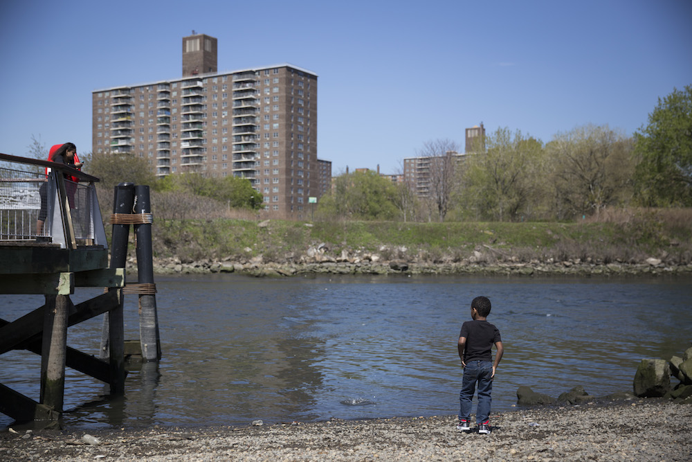 A young boy throws pebbles into the Bronx River at the edge of Hunts Point Riverside Park (photo by Jessica Bal).